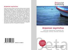 Bookcover of Acipenser oxyrinchus