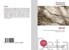 Spinel kitap kapağı