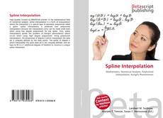 Bookcover of Spline Interpolation