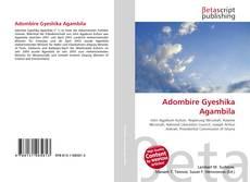 Buchcover von Adombire Gyeshika Agambila