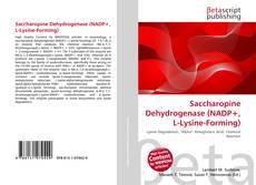 Saccharopine Dehydrogenase (NADP+, L-Lysine-Forming)的封面