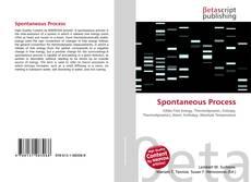 Spontaneous Process的封面