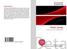 Pelvic Cavity kitap kapağı
