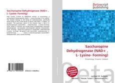 Saccharopine Dehydrogenase (NAD+ , L- Lysine- Forming)的封面