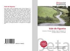 Buchcover von Vale de Figueira