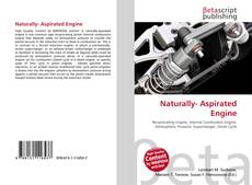 Bookcover of Naturally- Aspirated Engine