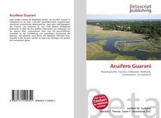 Acuifero Guarani kitap kapağı