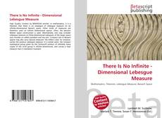 Buchcover von There Is No Infinite - Dimensional Lebesgue Measure