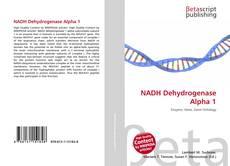 Buchcover von NADH Dehydrogenase Alpha 1
