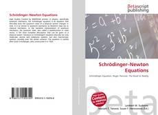 Обложка Schrödinger–Newton Equations