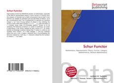 Borítókép a  Schur Functor - hoz