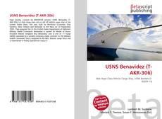 Bookcover of USNS Benavidez (T-AKR-306)