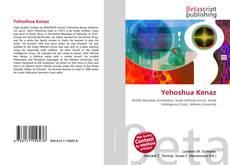 Обложка Yehoshua Kenaz