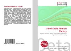 Bookcover of Semistable Abelian Variety
