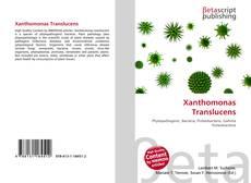 Bookcover of Xanthomonas Translucens