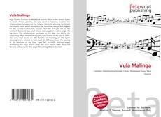 Bookcover of Vula Malinga
