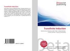 Обложка Transfinite Induction