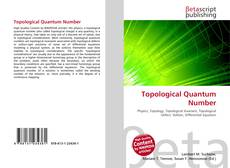 Bookcover of Topological Quantum Number