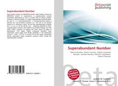Superabundant Number kitap kapağı