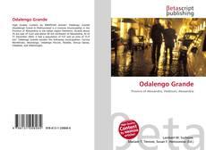 Bookcover of Odalengo Grande