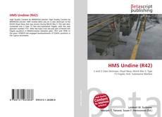 Buchcover von HMS Undine (R42)