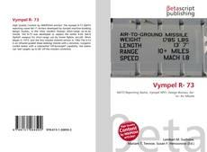 Capa do livro de Vympel R- 73