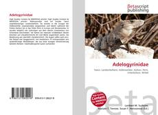 Adelogyrinidae kitap kapağı