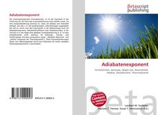 Bookcover of Adiabatenexponent