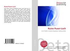 Buchcover von Ruine Puxer-Loch