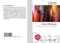 Buchcover von Ruine Offenburg