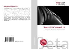 Bookcover of Saeta TV Channel 10
