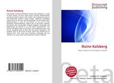 Buchcover von Ruine Kalsberg