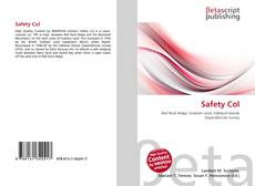 Bookcover of Safety Col