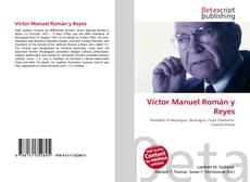 Bookcover of Víctor Manuel Román y Reyes