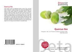 Capa do livro de Quercus Ilex
