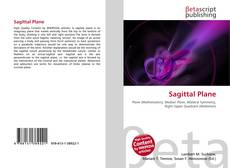 Bookcover of Sagittal Plane
