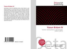 Обложка Yaxun B'alam IV