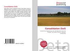 Consolidation (Soil)的封面