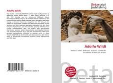 Adolfo Wildt kitap kapağı