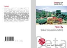 Bookcover of Porosity