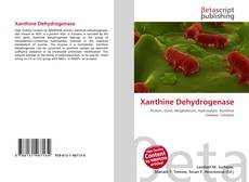 Bookcover of Xanthine Dehydrogenase