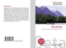 Bookcover of Río de Oro