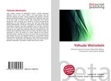Yehuda Weinstein kitap kapağı