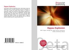 Bookcover of Oppau Explosion