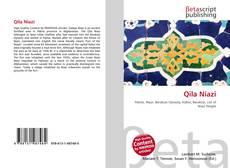 Обложка Qila Niazi