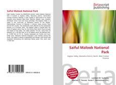 Saiful Malook National Park kitap kapağı