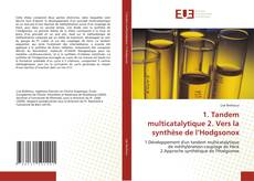 Bookcover of 1. Tandem multicatalytique   2. Vers la synthèse de l'Hodgsonox