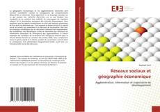 Capa do livro de Réseaux sociaux et géographie économique