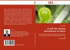 Buchcover von Le défi des déchets biomédicaux au Bénin