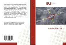 Buchcover von L'audit financier